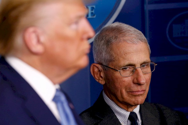 Dr. Fauci warns of 'imported' coronavirus cases once travel ban lifts